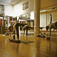 The Yoga College